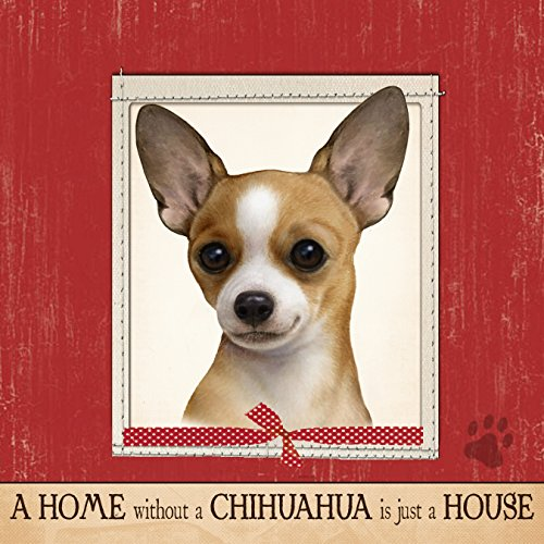 E&S Pets 600-10 Ultra Soft 16''x 16'' Chihuahua Gift Pillow by E&S Pets