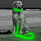 HiGuard LED Dog Leash - USB Rechargeable 4ft/120cm Long Nylon Webbing Pet Safety Leash - 3 Flashing Modes Light Up Perfect for Night Walking (Green)