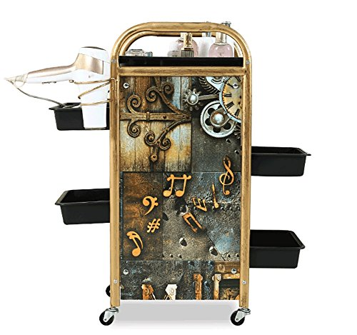 Salon SPA Hairdressing Trolley Barber Beauty Storage Cart Coloring Tray with 5 Drawers Hair Dryer Holder for Tool Storage, 2