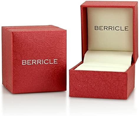 BERRICLE r573-AQ-6 product image 4