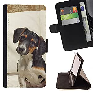 Momo Phone Case / Flip Funda de Cuero Case Cover - Jack Russell Terrier perro canino Mascota; - Sony Xperia Z3 Compact