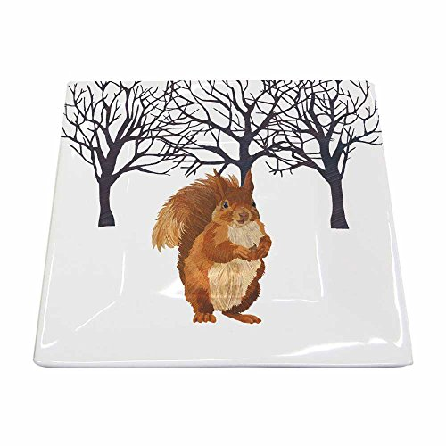 Paperproducts Design New Bone China Small Square Plate Featuring The Distinctive Winter Squirrel Design, 5.75 x 5.75