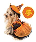 "Witch Costume For Dogs - Orange/Black with LED - Size 5 (14"" l x 18.5"" - 20.5"" g)"