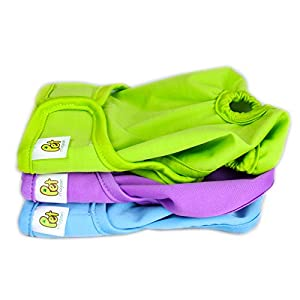 Pet Magasin Reusable Female Dog Diapers Panties, 3 Pack, Blue Green & Purple, Small