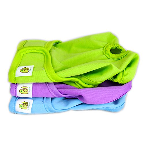 Pet Magasin Reusable Female Dog Diapers Panties, 3-Pack, Blue Green and Purple, Small (Dog Diaper Cat)
