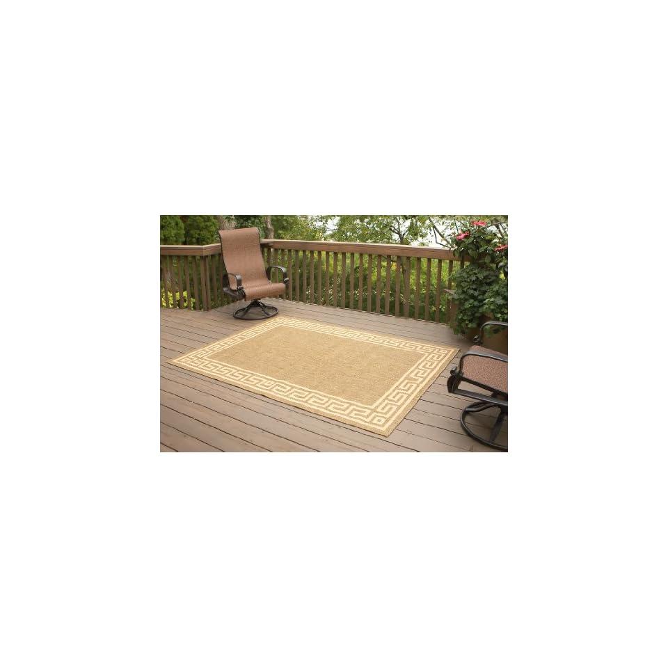 5x7 Indoor / Outdoor Rug
