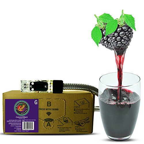 (Bar Beverages Concord Black Craft Grape Juice (3 Gallon Bag-in-Box Syrup Concentrate) - Box Pours 15 Gallons of Grape Juice - Use with Bar Gun, Soda Fountain or SodaStream)