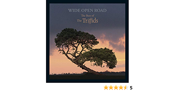 Wide Open Road The Triffids inspired Art Print