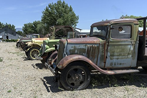 Photograph- Old trucks, used to haul fruit from nearby orchards in Grand Junction, Colorado. The vehicles are displayed at the Museum of Western Colorado's Cross Orchards Historic Site 66in x ()