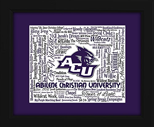 Trojans Art Glass - Abilene Christian University 16x20 Art Piece - Beautifully matted and framed behind glass