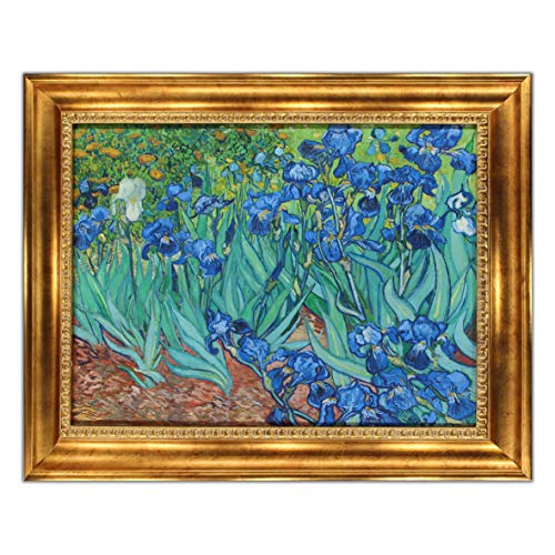 UpperPin Irises by Vincent Van Gogh, Oil Painting Print on Museum Quality Canvas, with Victorian Gold Frame, Size 31