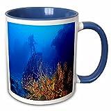 3dRose Sandy Mertens Florida - Diving in Dry Tortugas National Park - 11oz Two-Tone Blue Mug (mug_57578_6)