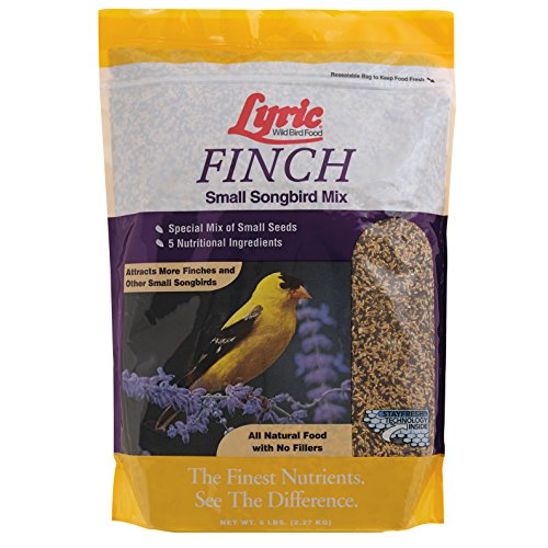 Lyric Finch Small Songbird Wild Bird Mix – 5 lb bag