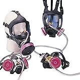 MSA 10002051 Paint Respirator