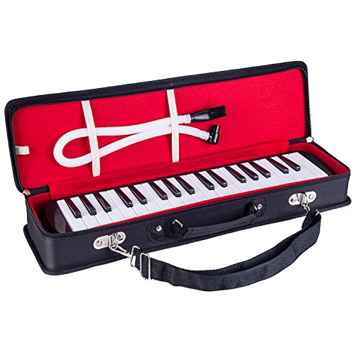 Awesome Musical Instrument You Can Take Anywhere!