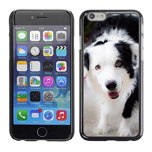 """Premio Sottile Slim Cassa Custodia Case Cover Shell // F00009578 chien // Apple iPhone 6 6S 6G 4.7"""""""