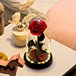 Sunia-Beauty-and-The-Beast-Rose-Handmade-Preserved-Fresh-Rose-in-Glass-Dome-with-Gift-Package-Romantic-Forever-Gift-for-Mothers-Day-Valentines-Day-Anniversary-Wedding-Birthday2Real-Rose-in-Glass
