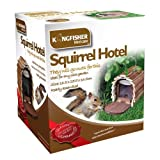 Kingfisher Wooden Squirrel Feed
