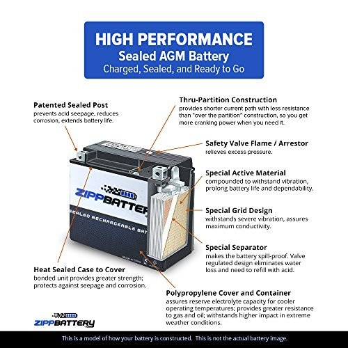 Chrome Battery YTX14-BS High Performance-Maintenance Free-Sealed AGM Motorcycle