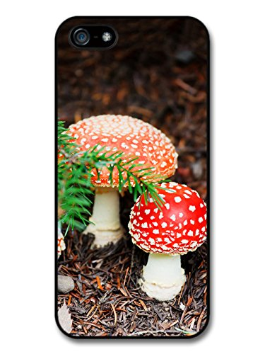 Cool Cute Toadstool Hippy Grunge Goth Photography Nature case for iPhone 5 5S