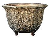 YUKIMONO Octagonal Bonsai Pot, 7.0-Inch Namako Review