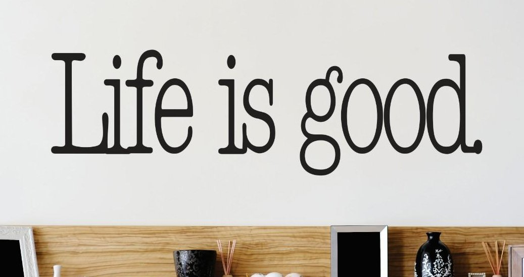 Design with Vinyl 3 Zzz 616 Decor Item Life is Good Quote Wall Decal Sticker 16 x 40 Inch Black