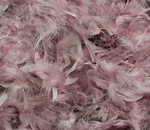 70's Game Show Costumes (Over 50 Different Solid Color Feather Boas by Cozy Glamour 6 Feet Long 50 Gram Weight (Vintage Rose #70))