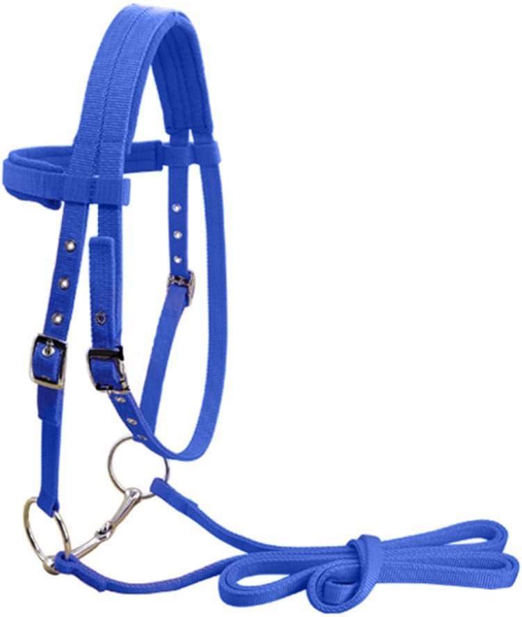 Fewao - Cabezales y Halter ecuestres Ajustables para Caballos con Broca y cinturón de rienda Fijo