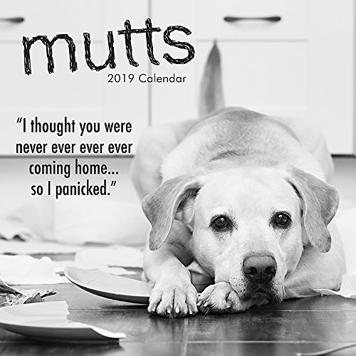 (2019 Wall Calendar - Mutts and Dogs Calendar, 12 x 12 Inch Monthly View, 16-Month, Funny Quotes Theme, Includes 180 Reminder)