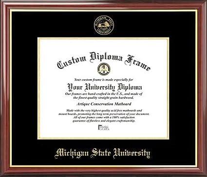 Amazon.com : Michigan State University Spartans - Embossed Seal ...