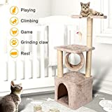 LEAGUE&CO 36'' Deluxe Cat Tree Level Condo Furniture Scratcher Scratching Post Kittens Pet Play House with Mouse Play Toy (Beige)