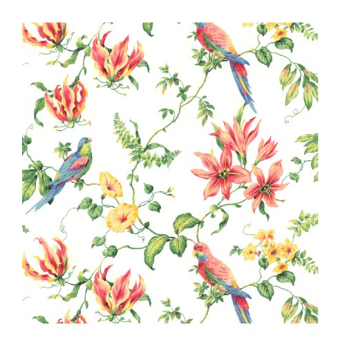 York Wallcoverings By The Sea CJ2801 Tropical Bird Wallpaper, White/Primary Wallcovering Primary