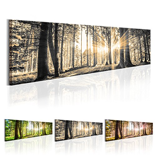 SENSATIONSPREIS! Bilder XXL 172x45 cm - Fertig Aufgespannt - TOP - Vlies Leinwand - 1 Teilig - Wand Bild - Kunstdruck - Wandbild - Natur Wald Landschaft c-B-0149-b-c 172x45 cm B&D XXL