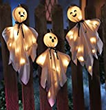 Halloween Lighted Hanging Haunted Ghosts Decoration By Collections Etc