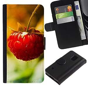 Billetera de Cuero Caso Titular de la tarjeta Carcasa Funda para Samsung Galaxy S5 V SM-G900 / Fruit Macro Raspberry Lonely / STRONG