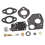 3hp carburetor - HITSAN Carburetor Carb Repair Rebuild Kit For Briggs Stratton 495606 494624 3HP-5HP One Piece