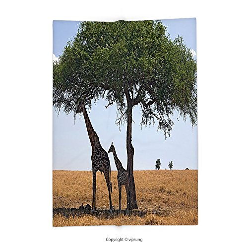 Tallest Trees Ever - Custom printed Throw Blanket with Safari Decor Collection Ba and Mom Giraffe under the Tree the Tallest Animal Mammal in Savannahs Nature Art Photo Multi Super soft and Cozy Fleece Blanket