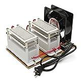 OlogyMart AC220V 20g Ozone Generator Long Life Ozone Disinfection Machine Purifier