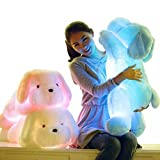 Primey Big Size 50cm/20 Inches Kawaii Teddy Dog Luminous Plush Toys Color can Change Led Light Pillow Cushion Children Party Birthday Gift(White)