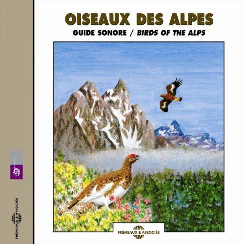 Alp Pie - Pie grieche ecorcheur (Red Backed Shrike)