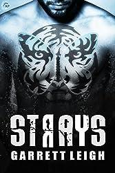 Strays  (Urban Soul Book 2)