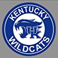 Set Of 4 Coasters Kentucky Wildcats
