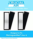 2    Air Purifier HEPA Filter B, Fits 3-in-1 Systems, AC4825, AC4800 Series, Compare to Part # FLT4825, by Think Crucial
