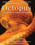 Octopus the Oceans Intelligent Invertebrate