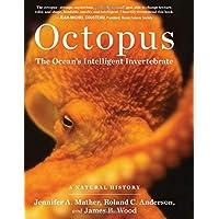 Octopus: The Ocean's Intelligent Invertebrate