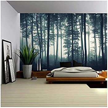 Image result for home wall murals