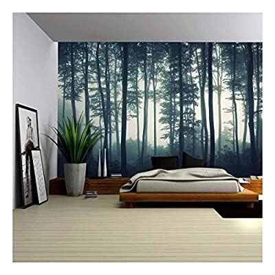 Stunning Style, Made For You, Landscape Mural of a Misty Forest Wall Mural