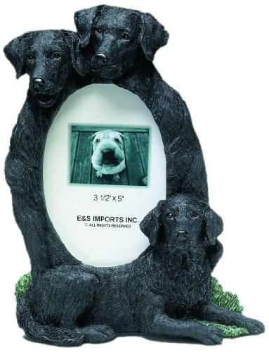 E&S Pets 35257-56b Large Dog Frames