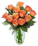 #3: KaBloom Bouquet of 12 Fresh Cut Orange Roses (Farm-Fresh, Long-Stem) with Vase