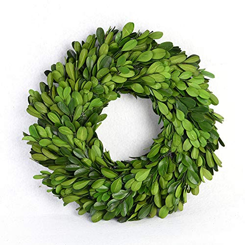 (BoxWoodLand Real Boxwood Plant Wreath, Ball, Cone Tree, Wedding Home Decoration, Realistic Full Green Plant, Indoor Décor(Wreath,)